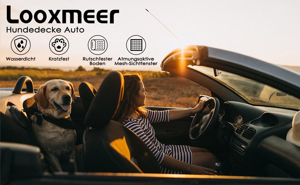 Looxmeer Hunde Autoschondecke