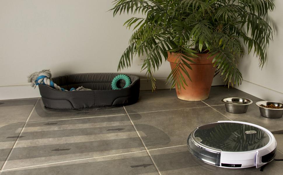AMIBOT Animal H2O – Un robot aspirateur pensé pour aspirer les poils de vos animaux