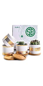 SUN-E 3.15 Inch Succulent Planters with Bamboo Tray Set