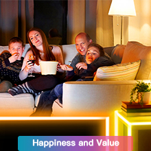Happiness and Value