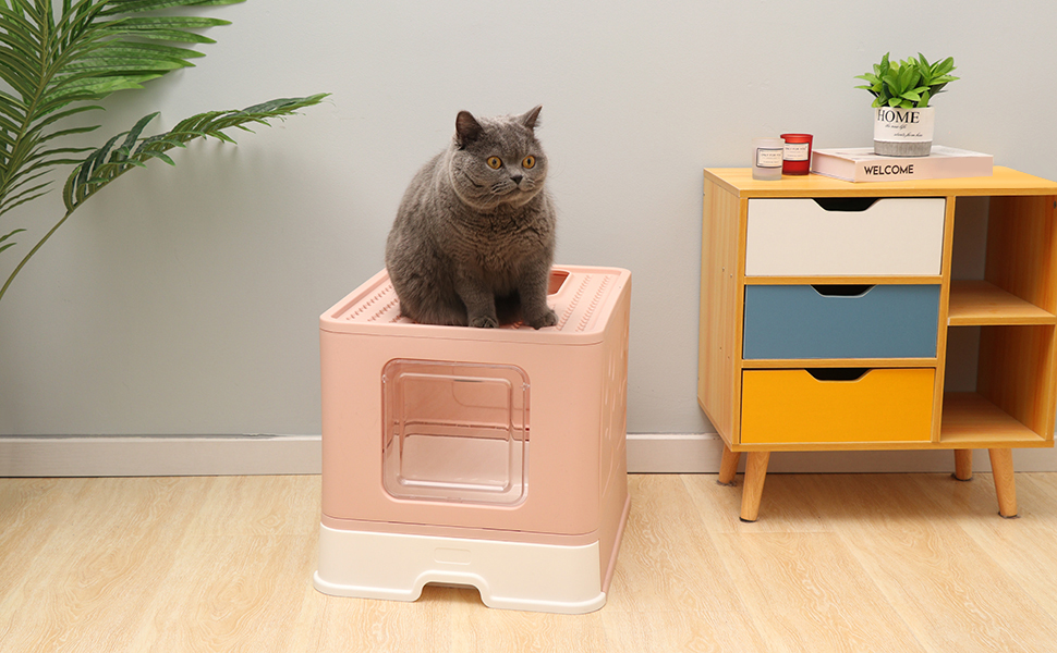 PINK CAT POTTY LITTER BOXES