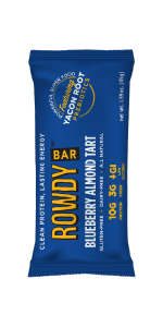 prebiotic protein bar