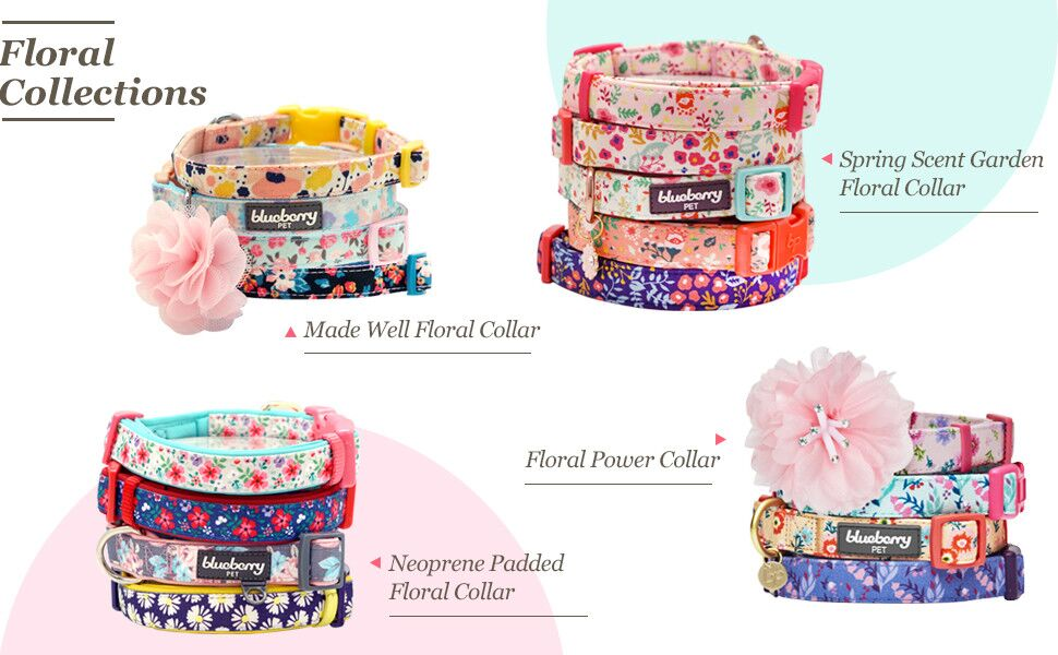 floral collection collar