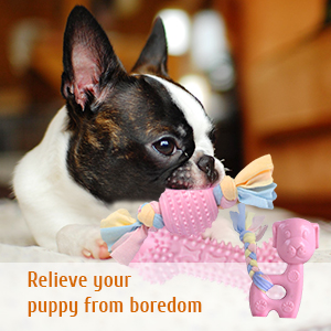 chewing toys for puppies