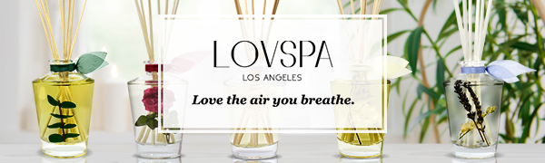 LOVSPA Fragrances Reed Diffuser Oil Sets with Scented Sticks. Natural Air Freshener for the home.