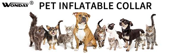 WONDAY pet inflatable collar
