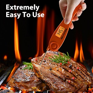 extremely easy to use meat thermometer