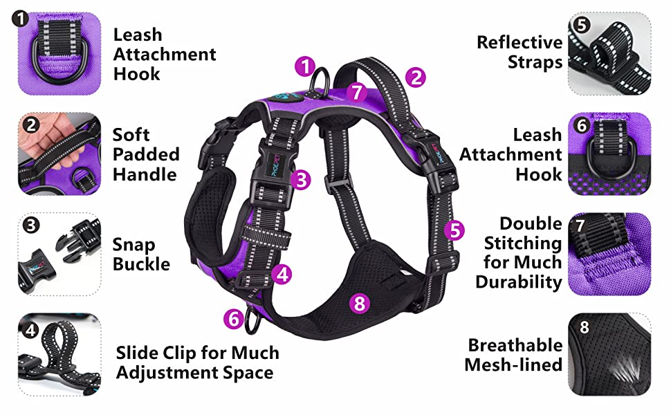 XS,Purple PHOEPET Updated No Pull Dog Harness Reflective Puppy Vest 4 Snap Buckles 2 Metal Hooks Training Handle 4 Slide Buckles