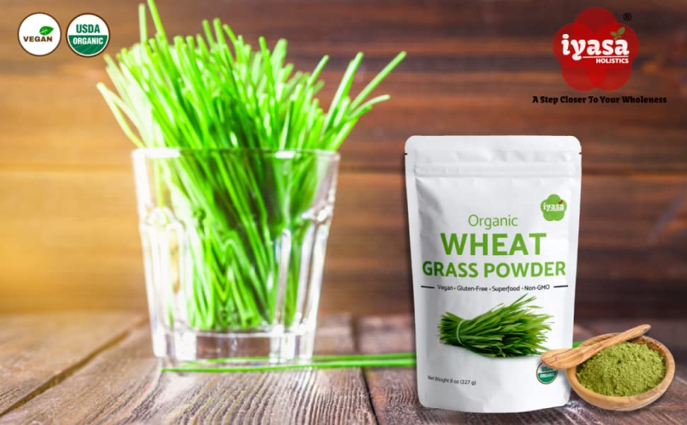Iyasa Holistics Wheatgrass Powder Main Image
