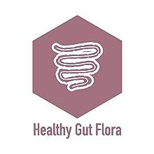 Healthy gut flora