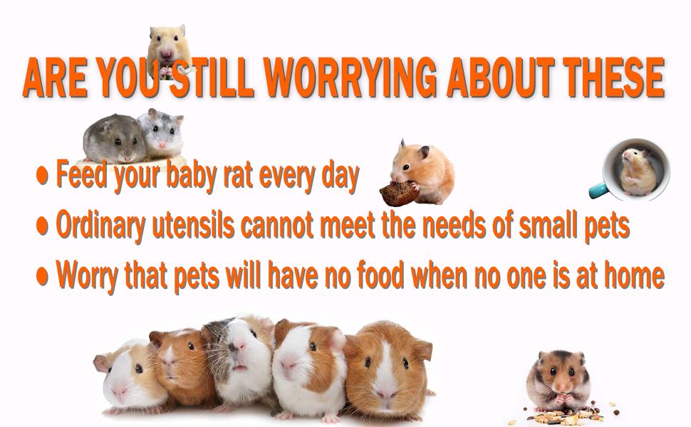 automatic hamster feeder gravity feeder guinea pig outfitfeeder rats guinea pig bowl  gravity