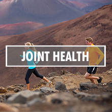 MSM for Joint Health and Sports Recovery