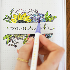 Bullet journalling journal adult colouring book scrapbooking