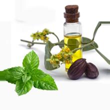 Mint jajooba oil