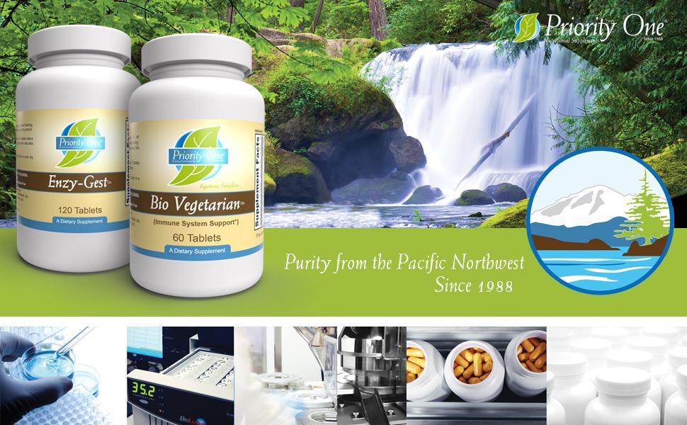 Bio vegetarian, vitamin c, echinacea, ginger, garlic, immune system, immune vitamins, vitamin d,