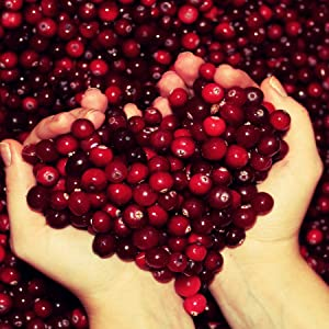 Cranberry Juice, healthy body, immunity, UTI