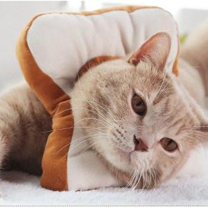 As comfortable as a pillow