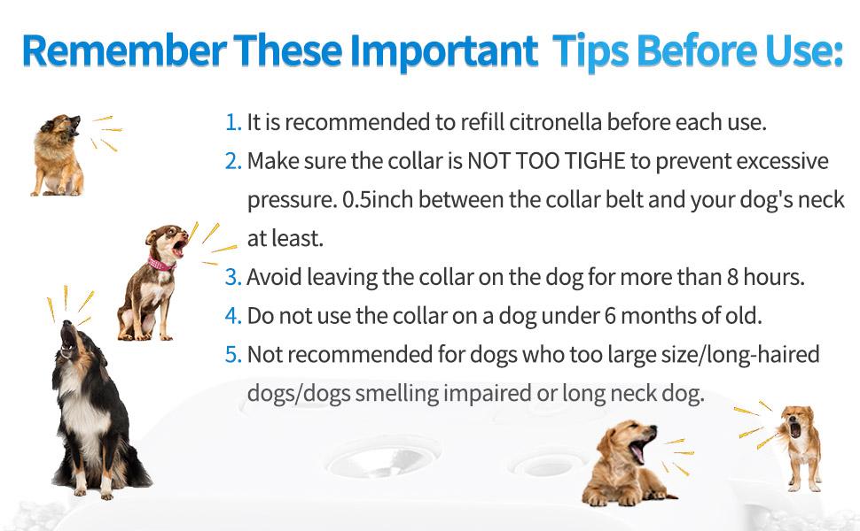 dog bark collar use tip