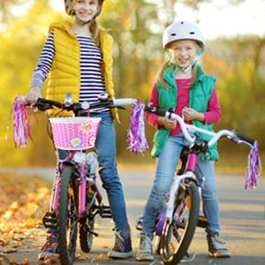 bike basket for dogs