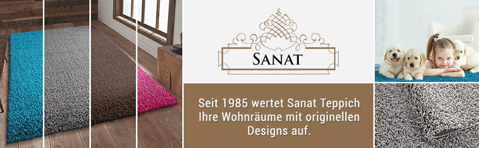 1985 SANAT