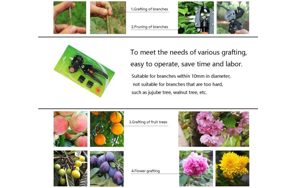 pruner garden tools