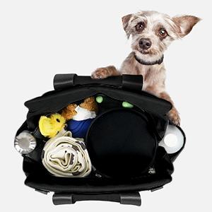 dog supplies pet belonging cat products