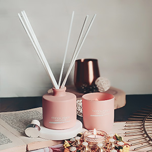 Reed stick diffuser,scent diffuser,home frangrance,diffuser oil,aroma diffuser,scent sticks,miniso
