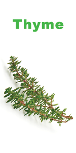 Organic Thyme Seeds for planting - Nature's Blossom 5 herbs grow kit for gardeners - garden gift set