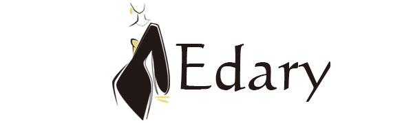 Edary Fashion heart necklace heart crystal choker neckalce clavicle  neckalce for women