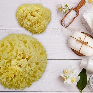 Constantia Beauty Sea Wool Sponge