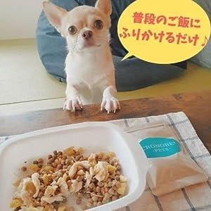 犬、猫、腸活、腸内フローラ、健康、ペット用サプリメント、プロバイオティクス、ドッグフード、キャットフード