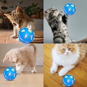 Interactive Cat Toy Balls