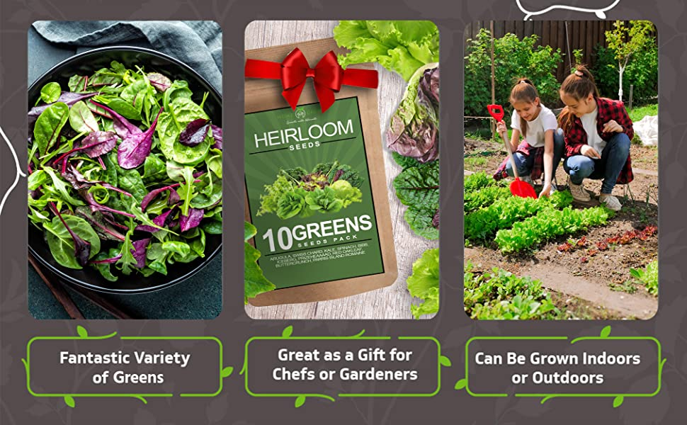 greens, lettuce, seeds, heirloom seeds, arugula, veggies, vegetables,PLANTING,PLANTS, GARDENING,
