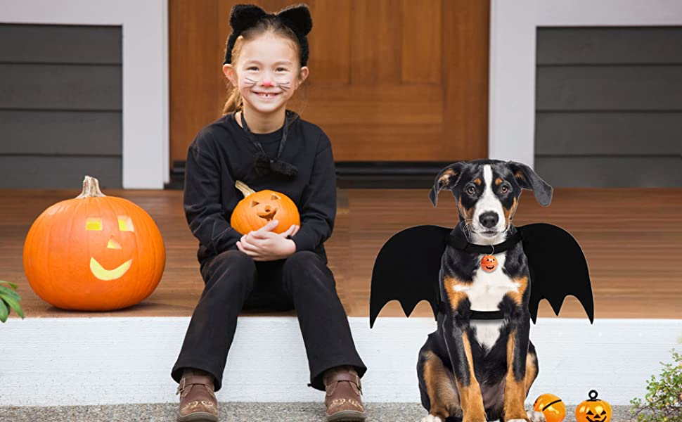 A dog wearing the Halloween costume with a girl.