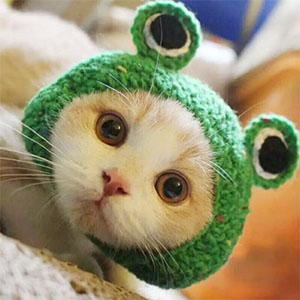 crochet hooks for crocheting