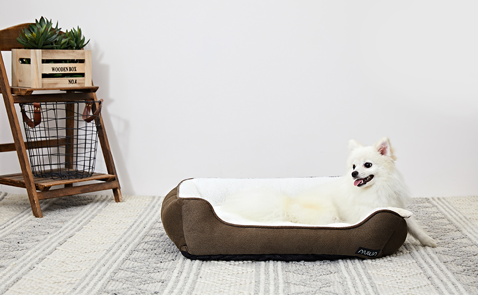 medium dog bed clearance