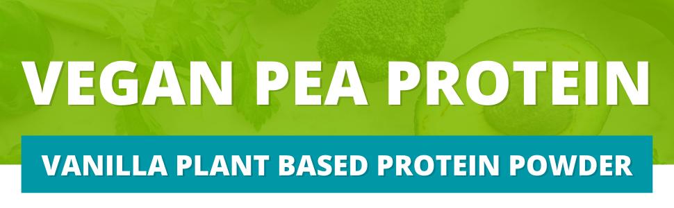 vanilla plant based protein powder, vegan pea protein