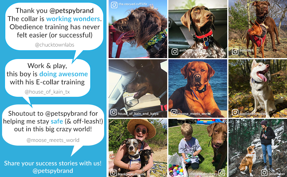 PetSpy happy customers reviews from instagram