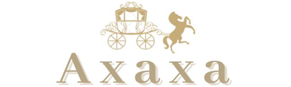 logo of Axaxa