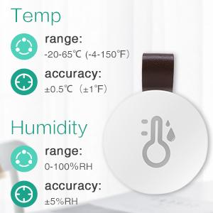Wireless Thermometer Hygrometer