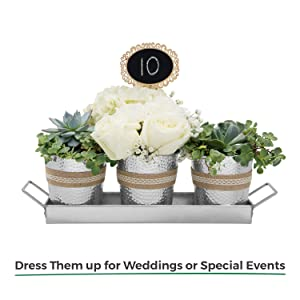 planter pots wedding decoration