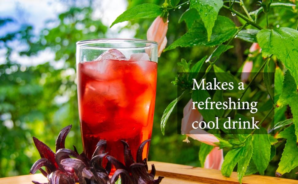 Sorrel hibiscus drink