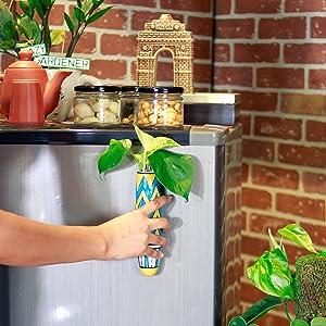 plants pot for home decor, fridge magnets