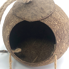 bird house for cage