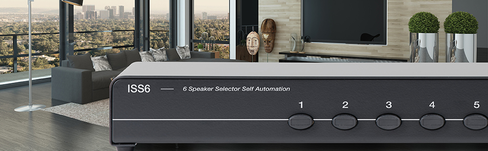 Speaker selector for whole house audio