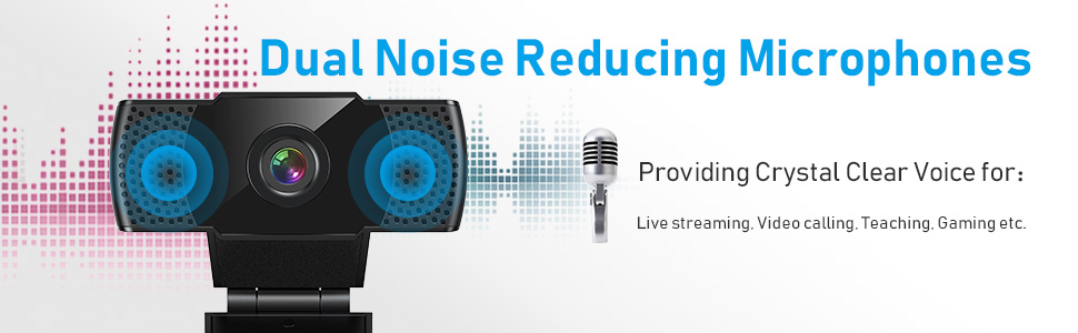 noise cancelling microphone