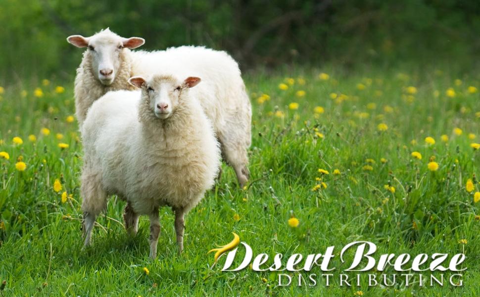 6733 SouthdownAlpaca Blend Wool Roving-8oz.