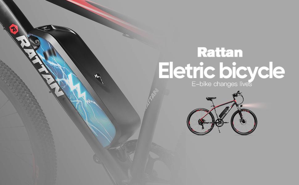 350w adult electric bike genze electric bike rattan electric bike aluminum electric bike 350 watt