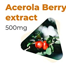 Acerola Berry Extract