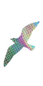 seagull deterrant